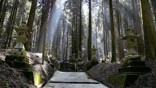 熊本県阿蘇のパワースポット 「上色見熊野座神社」で幻想世界へ