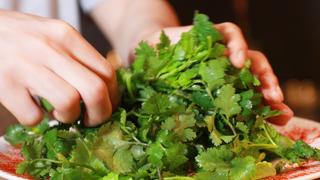 西班牙料理×香菜迸出新滋味!在「Cilantro」來場香菜女子聚會吧
