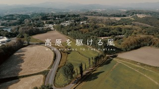 高原に駆ける風 七塚原のポプラ並木