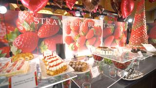 這才叫做大人版的採草莓!「幕張新大谷飯店」一位難求的發燒中草莓吃到飽