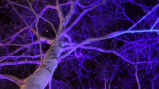 氷のホテルに氷の露天風呂「星野リゾート トマム」で冬季限定の幻想体験!
