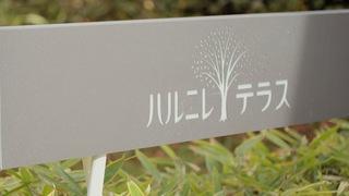 講究好品質的店家齊聚!輕井澤星野園區「榆樹街小鎮」精選名產BEST3