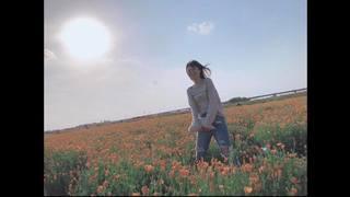 """春のインスタ映えは""""poppy happy square """" 日本一のポピー畑を堪能"""