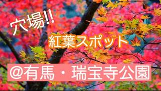 穴場!!和みの紅葉スポット@有馬・瑞宝寺公園