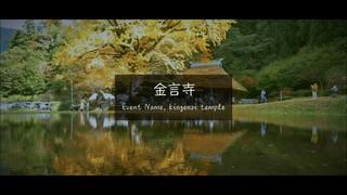 """【島根県】水面を挟んだ2つのセカイ。黄金色に輝く""""金言寺の大イチョウ"""""""