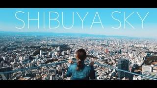 上空229mからの絶景!東京の中心から見渡す世界!