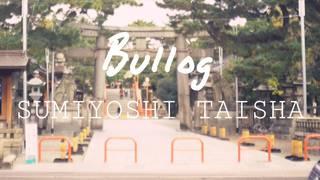 【住吉大社】大阪随一のパワースポット Bullog