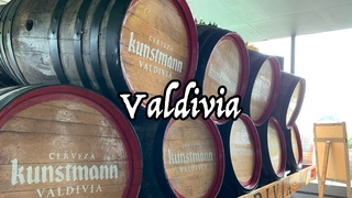 【Vlog】チリ駐在員が紹介するチリのビール工場 in Valdivia