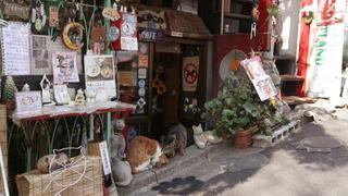 谷中的隱密景點。有貓咪的古民家咖啡廳「Nennekoya」