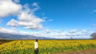 琵琶湖周辺、大人の一人旅。ドライブにフォトスポットに御朱印。