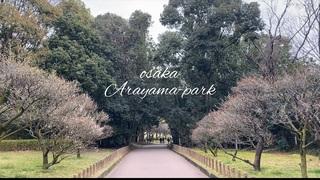 大阪『荒山公園』で穏やかな休日を…