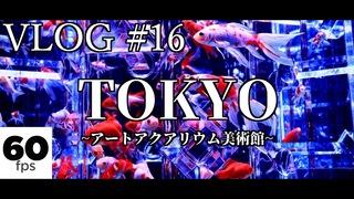 【Cinematic】TOKYO VLOG #16【アートアクアリウム美術館】【COLOR OF TOKYO】【銀座】