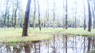 自然の中の不自然 水庭〈アート・ビオトープ那須〉