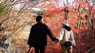 【花貫渓谷】茨城県の紅葉
