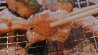 桜と希少部位を贅沢に楽しむ!地鶏料理・中目黒「焼鶏あきら」