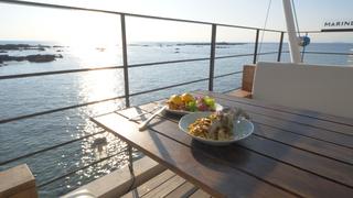 湘南の海沿い絶景テラス「Marine & Farm SAJIMA」