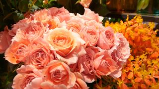 """花と緑のオアシス。""""私のため""""のお花に出会うフラワーショップ「BIANCA BARNET by OASEEDS」"""