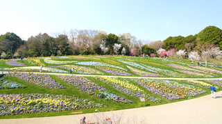 期間限定!横浜が花で溢れるイベント「ガーデンネックレス横浜2018」