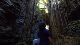 ガイドツアーで沖縄の歴史、自然、命を知る「ガンガラーの谷」