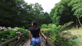 「アート・ビオトープ那須」のツリーハウスやガーデン。朝の那須高原を散策