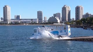 カバのように海へダイブ!お台場を巡る水陸両用バスアトラクション