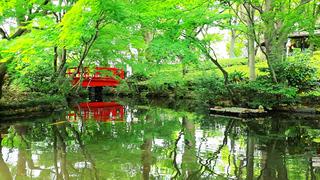 美しい日本庭園を望む「ホテルニューオータニ」のラグジュアリー空間