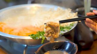 こたつ女子会が大ブーム! 「両国テラス」で体の芯から暖まる鍋料理を堪能