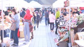接合生產者和消費者的市集──吃遍「綠色市場墨田」
