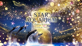 NAKED×マクセルアクアパーク品川のクリスマス「STAR AQUARIUM」開催