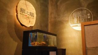 予約殺到!大阪「鯛之鯛 難波店」で鮮魚と熟成魚の食べ比べ