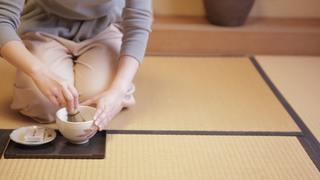 宇治茶専門店の老舗「三星園 上林三入 本店」で抹茶づくり体験
