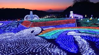250万球の奇跡「東京ドイツ村ウィンターイルミネーション2018-2019」開催
