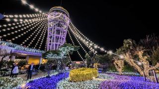関東三大イルミ再認定!江ノ島「湘南の宝石2018-2019」