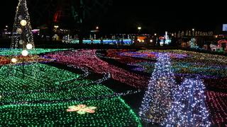 東武動物公園「ウインターイルミネーション2018-2019」10周年!