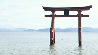 琵琶湖に鳥居が浮かぶ絶景パワースポット!滋賀「白鬚神社」