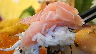 盡情品嚐晨間現捕鮮魚 LUSCA熱海絕品美食3選