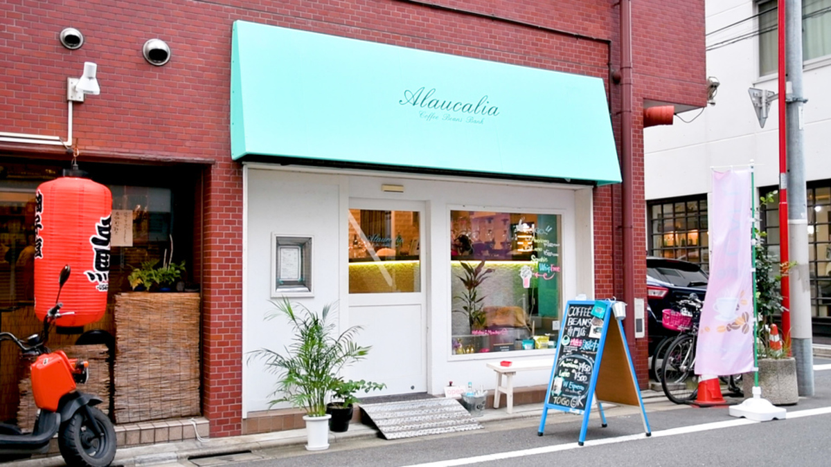 Alaucalia Coffee Beans Bank