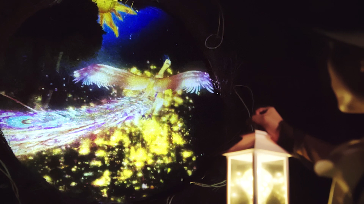 ニジゲンノモリ ナイトウォーク火の鳥