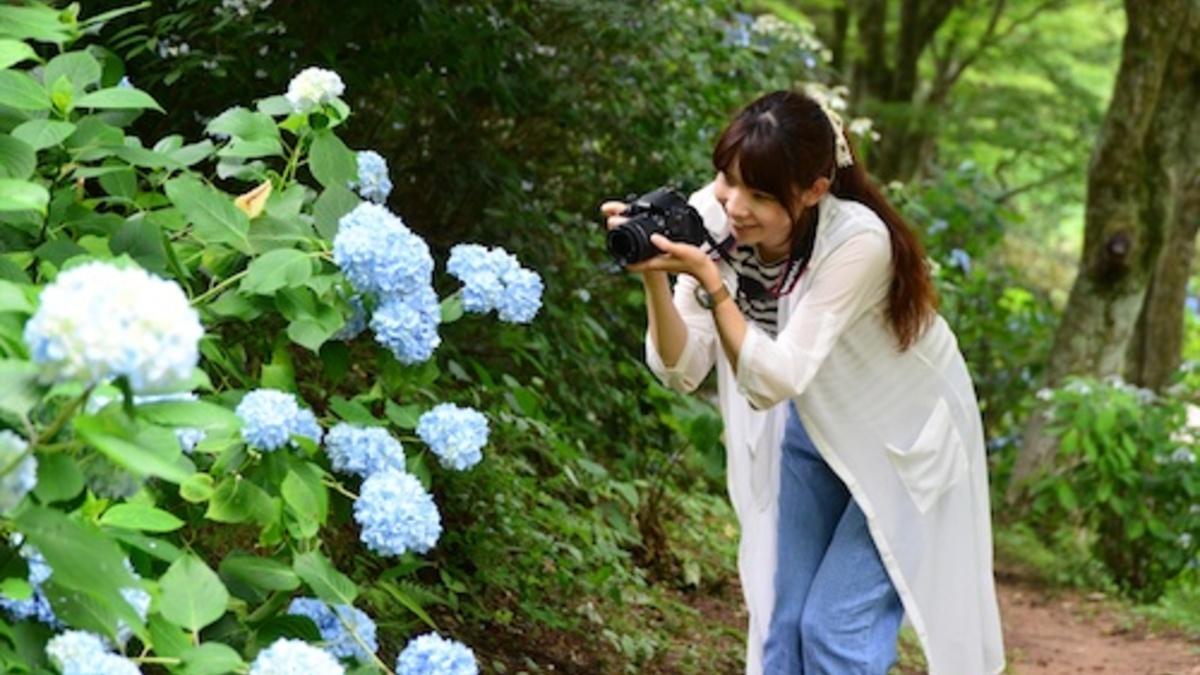 初夏の花めぐり ROKKOフォトグラフィックガーデン