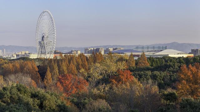 記念 公園 万博 【2021年】万博記念公園で「梅まつり」と「つばき祭」が開催されます。