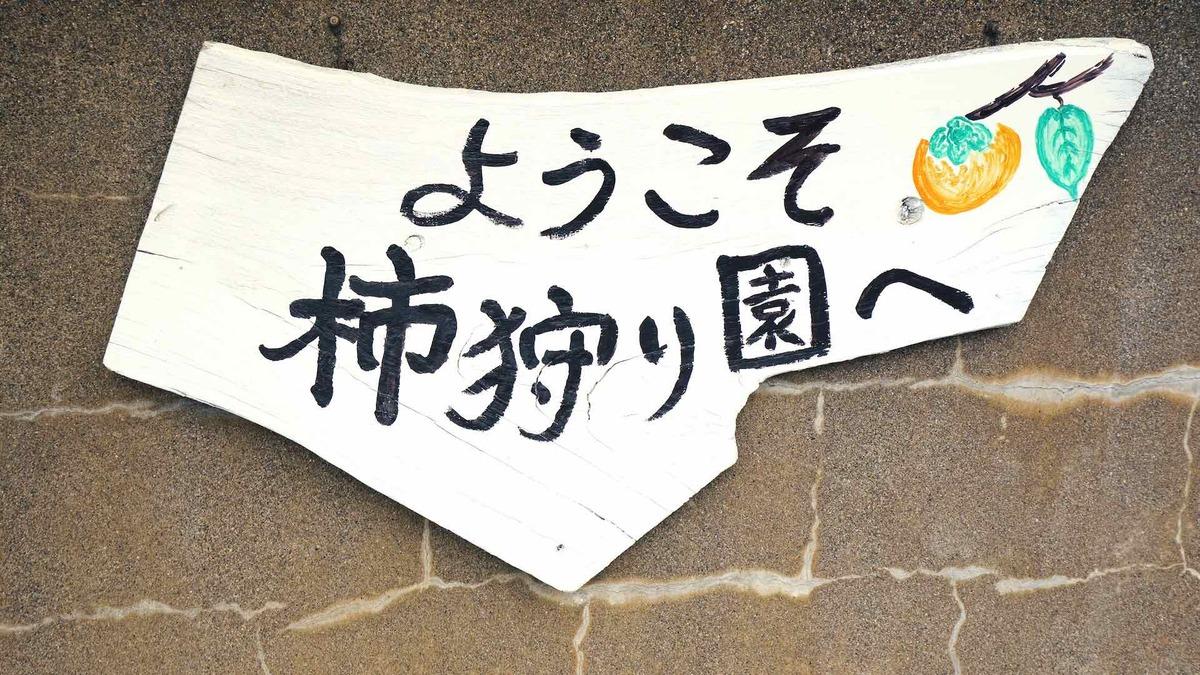 堀江柿狩園