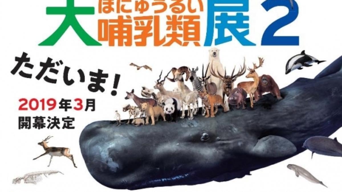 大哺乳類展2-みんなの生き残り作戦