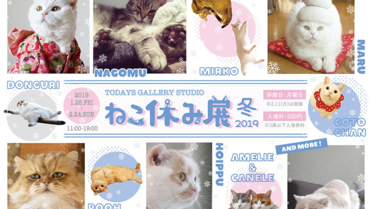 猫の合同写真展&物販展「ねこ休み展 冬 2019」