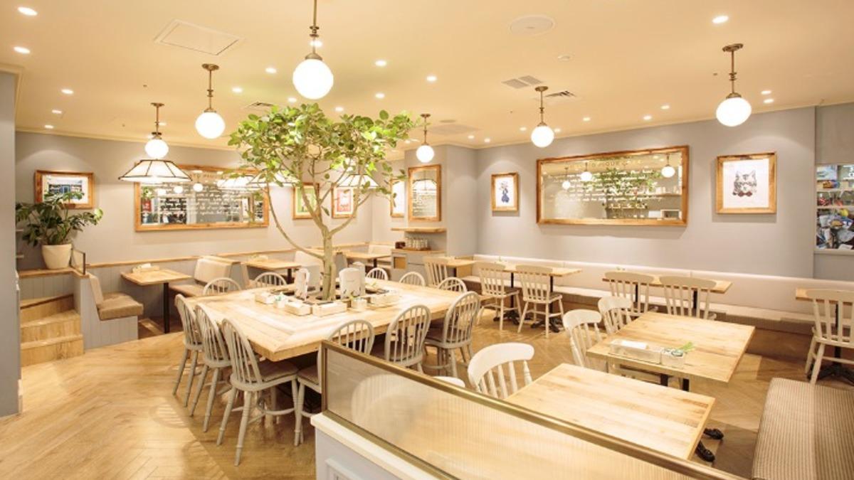 gelato pique cafe bio concept 京都 The CUBE店