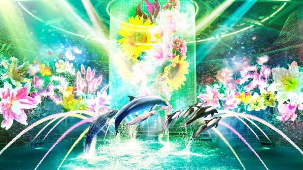 FLOWER AQUARIUM Directed BY NAKED -Brand New Sea-