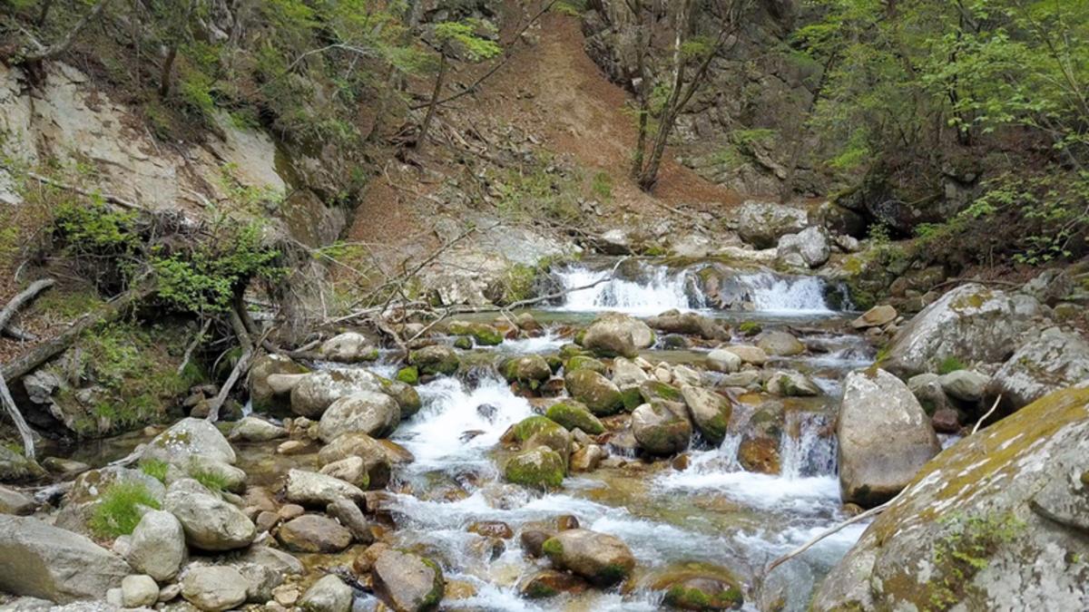 本谷川渓谷